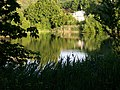 První motolský rybník, od severozápadu.jpg