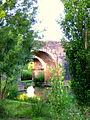 Puente de Cantillana. Vegetación.JPG