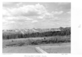 Queensland State Archives 4902 Housing Commission Estate Inala September 1953.png