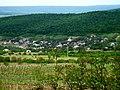 R20, Moldova - panoramio (12).jpg