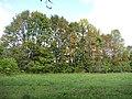 Ragava, Lithuania - panoramio.jpg