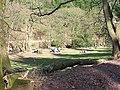 Ramscombe picnic area - geograph.org.uk - 147708.jpg