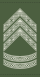 Rank insignia of oversergent of the Royal Danish Army.svg