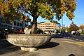 Rapperswil - Stadthofplatz - Sonnenhof IMG 2403.JPG