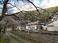 Re Shirayamamachi, Hakusan-shi, Ishikawa-ken 920-2115, Japan - panoramio (5).jpg