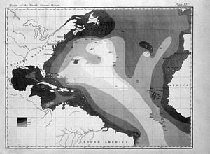 Bathymetry - First printed map of oceanic bathymetry, produced with data from USS ''Dolphin'' (1853).