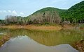 Reflections at Kambalakonda Wildlife Sanctuary.JPG