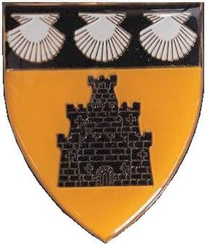 Regiment Oos Rand - Regiment Oos Rand shoulder emblem