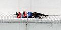 Rennrodelweltcup Altenberg 2015 (Martin Rulsch) 5218.jpg