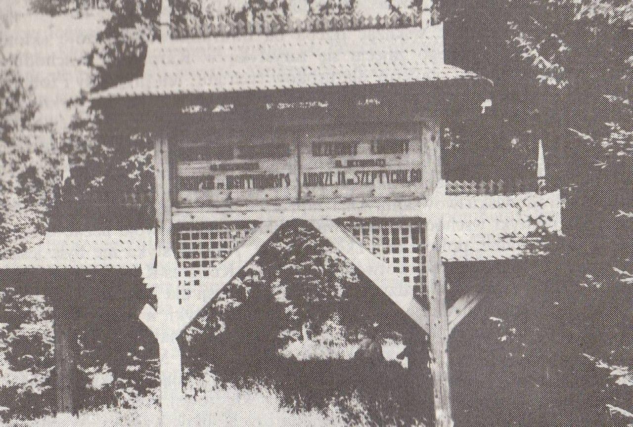 Заказник швейцарской сосны, организованный в Перегинском Андреем Шептицким в 1939 году