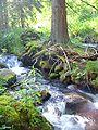 River-Sajo-Slovakia01.jpg