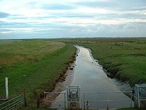 River Cocker, Lancashire - River Cocker