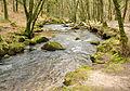 River Fowey in Draynes Wood.jpg