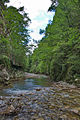 River Mali Rzav and Visocka Banja Spa in Serbia - 4283.NEF 10.jpg