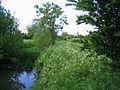 River Roding - near Miller's Green - geograph.org.uk - 178879.jpg