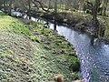River Stort in Castle Park - geograph.org.uk - 1764736.jpg