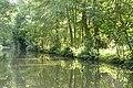 River Wey Navigation near West Hall - geograph.org.uk - 949118.jpg
