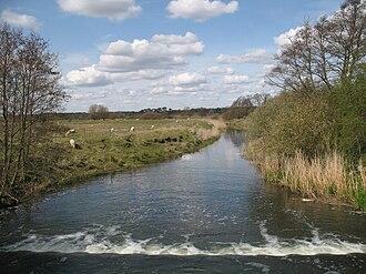 River Lark - The river near Icklingham