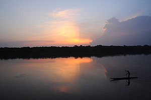 Sangha River - The Sangha River in the Central African Republic in 2010