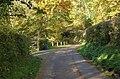 Road in Cusop Dingle - geograph.org.uk - 1031396.jpg