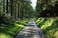 Road through the woods - geograph.org.uk - 968481.jpg