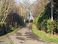 Road to Kelly Mains Farm - geograph.org.uk - 1101457.jpg