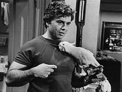 Robert Blake Baretta and Fred 1976.JPG