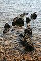 Rock in the sea - panoramio.jpg