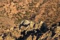 Rocks (26069443614).jpg
