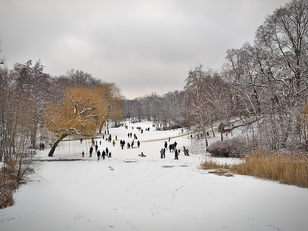Sledders in the Rudolph-Wilde Park in Berlin-Schöneberg. Jan. '16.