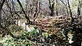 Ruiny Sanktuarium Matki Bożej Bolesnej z 1743 r., Kapliczna Góra 2018.10.31 (19).jpg