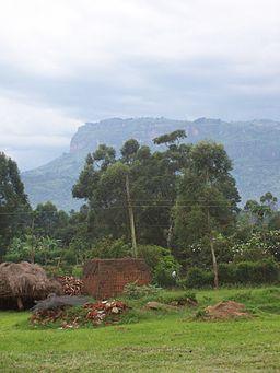 Rural Mbale, Uganda - by Michael Shade