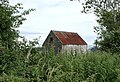Rusty-roofed barn at Cahore - geograph.org.uk - 1471325.jpg