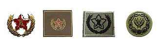 South African Commando System - Voluntary Service Award (variations)