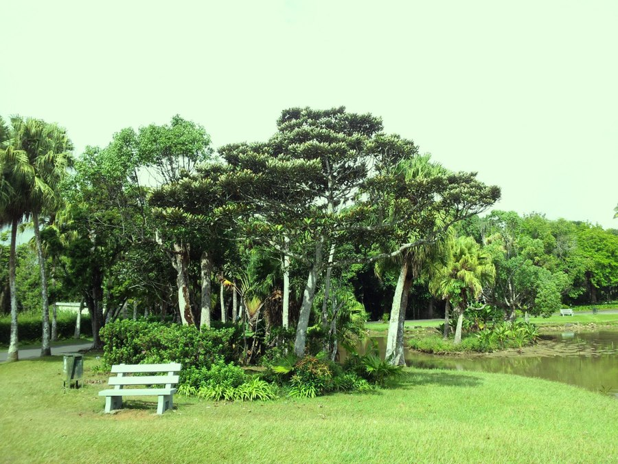 Curepipe Botanic Gardens