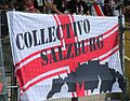 SV Ried gegen FC Red Bull Salzburg (August 2016) 06.jpg