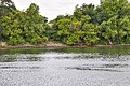Sacramento-San Joaquin Bay Delta (32483368972).jpg
