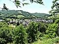 Sainte-Eulalie-d'Olt village.jpg