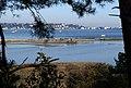 Saltwater Lagoon, Brownsea Island - geograph.org.uk - 463051.jpg