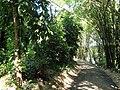 San Juan Botanical Garden - DSC06984.JPG