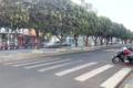Santa Fé do Sul - Avenida Navarro de Andrade.png
