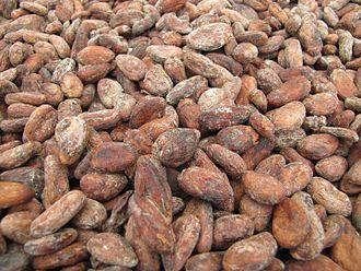 Economy of São Tomé and Príncipe - Image: Sao Tome Monteforte Cocoa Beans Drying 2 (16062855549)