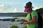 Save the sea turtles! Andersen teams with local university to conserve species 140813-F-XN788-003.jpg