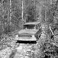 Scenes from bear hunt conducted by Bill Gibbs of Marion, NC near Black Mountain, NC Dec 1966 photo by Arrington. From Conservation and Development Department, Travel and Tourism photo files, State (28722056963).jpg
