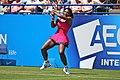 Serena Williams (5848794327).jpg