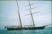 Shenandoah lying on her anchor in Vineyard Haven's Outer Harbor