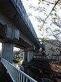 Shibukawa bridge 01.jpg
