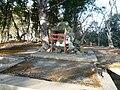 Shrine gate on Saiki castle ruins.jpg