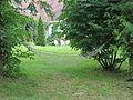 Sikorzyno, park dworski (3).JPG