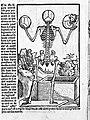 Skeleton with skulls - Berengarius 1521 Wellcome L0001201.jpg